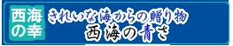 長崎県西海産 あおさ
